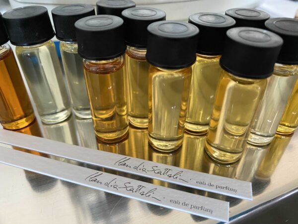 Kit 25 fbottles 5ml per Perfume Lounge Claudia Scattolini